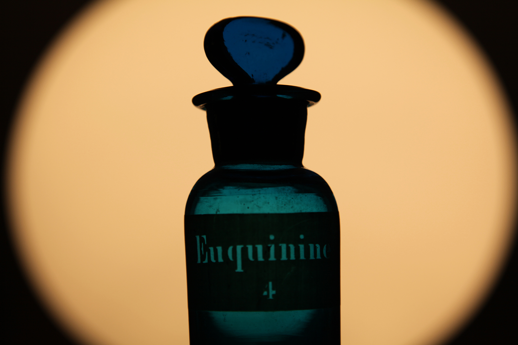 Bottle of Euquinine. Photo: Quique Bassat