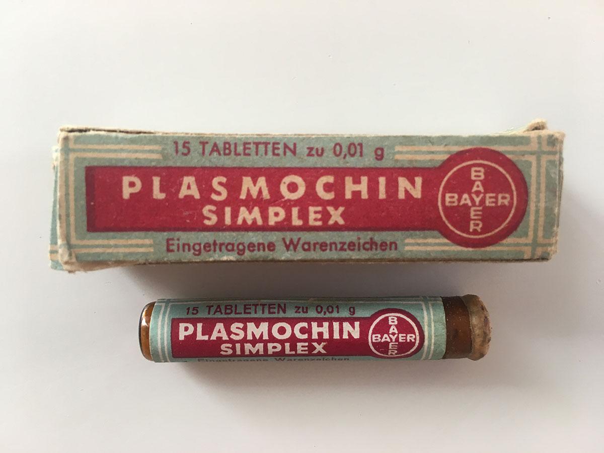 Envàs i tub de Plasmochin simplex. Foto: Quique Bassat.